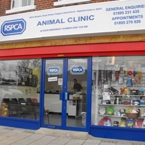 Your Local RSPCA image