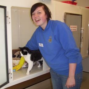 Interested in volunteering for the RSPCA? image