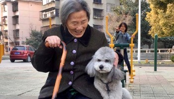 old lady with dog in china