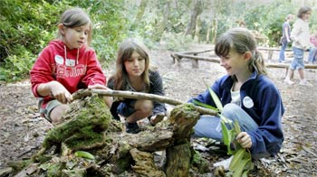 Girls buiding animal homes at Mallydams Wood © Andrew Forsyth/RSPCA photolibrary