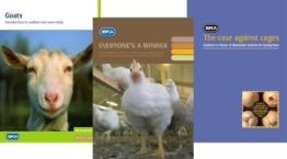 A selection of farm animals information resources © RSPCA