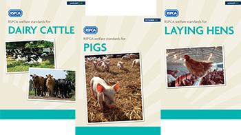 RSPCA welfare standards cover collage © RSPCA