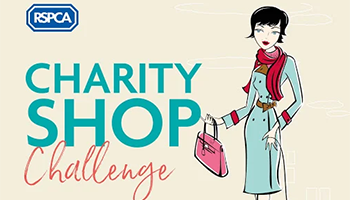 rspca charity shop challenge