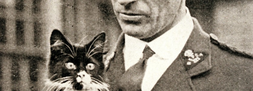 rspca inspector with cat ww1