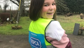 rspca litter picker