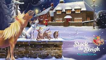 Stock the Sleigh for the RSPCA