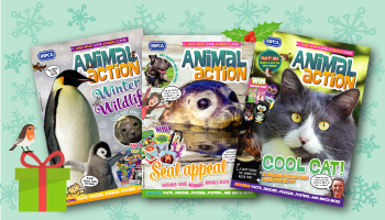 Animal action Magazine gift subscription
