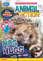 Animal action cover Spring