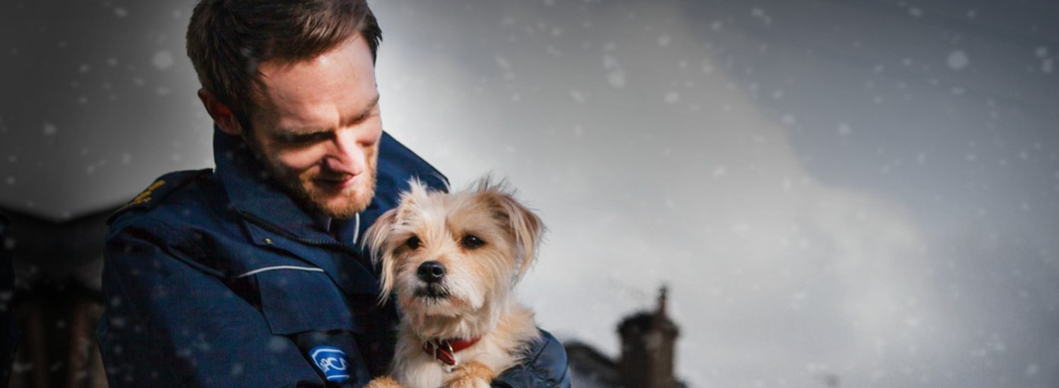 RSPCA Inspector holding a puppy