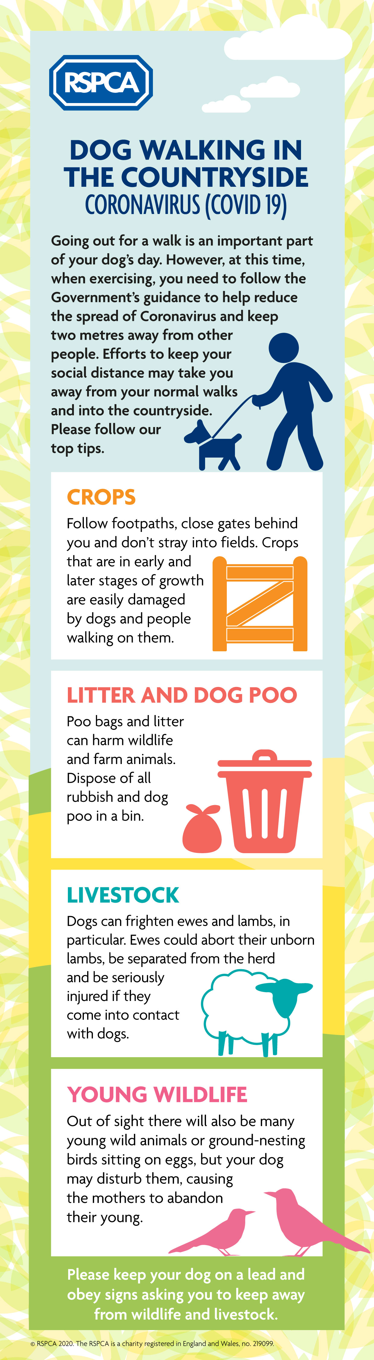 Walking your dog in the countryside infographic © RSPCA