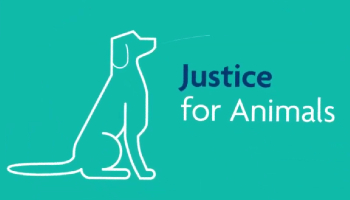 Justice for animals