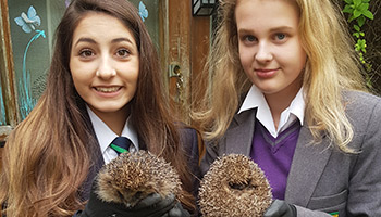 Kyra and Sophie holding hedgehogs