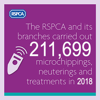 Microchipping, neutering and treatment statistics for 2018 © RSPCA