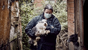 RSPCA Inspector carrying a dog