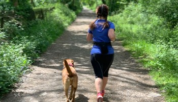 Runner out for a solo run with their dog