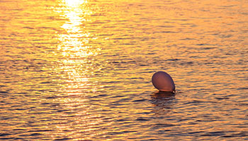 Single balloon in the ocean © Canva