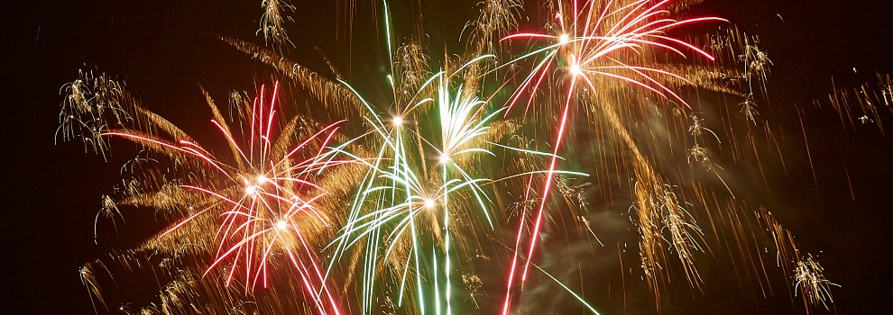 Fireworks in the night sky © RSPCA