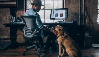 Man and dog working from home