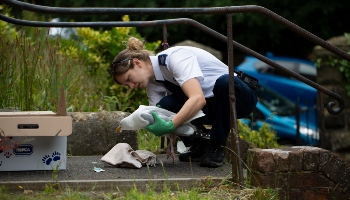 RSPCA inspector rescuing a gull © RSPCA