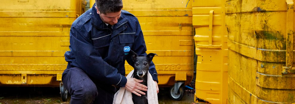 RSPCA inspector rescuing a dog