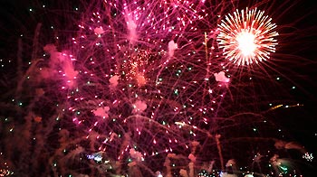 Public fireworks display © RSPCA