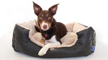 CP Designs dog bed © CP Designs