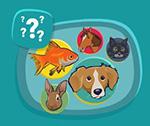 Interactive Quiz About Animal Needs