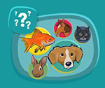 Interactive Quiz About Animal Needs