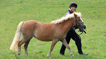 Groom Clare walking with horse Lulu © Andrew Forsyth/RSPCA Photolibrary