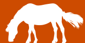 Horse graphic © RSPCA