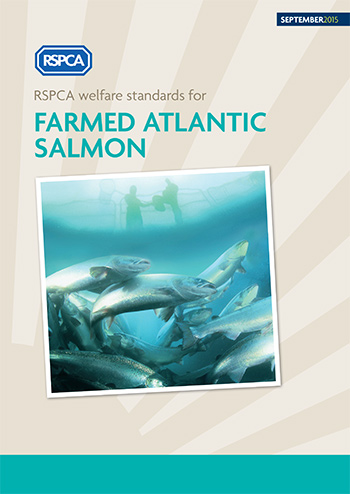 RSPCA welfare standards for farmed Atlantic salmon cover © RSPCA Farm Animals Department