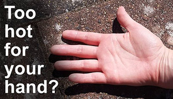 If the pavement is too hot for your hand it's too hot for your dogs paw © RSPCA