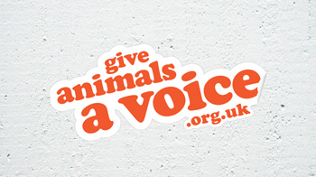 Give animals a voice logo