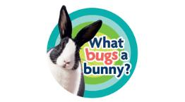 What Bugs a Bunny? © RSPCA