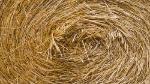 Hay bale © IStock Photos / Lissart