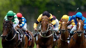 Jockeys and race horses head-on during a race © Jeff Crow / iStockphoto.com