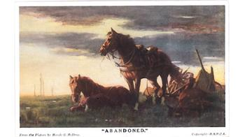 WW1 postcard of War Horse painting © RSPCA