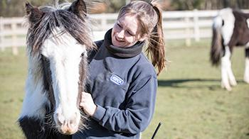 Horse with RSPCA Animal Care Assistant © RSPCA