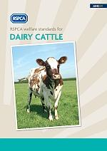 RSPCA welfare standards for dairy cattle cover © RSPCA Farm Animals Department