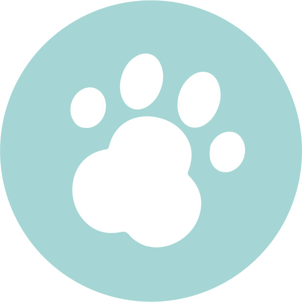 Paws for Change logo © RSPCA