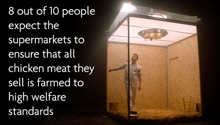 8 out of 10 people expect supermarkets to ensure chicken sold is farmed to high welfare standards
