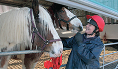 Animal Care Assistant with two horses © RSPCA