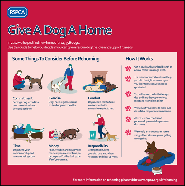 Guide Dog Rehoming >> How to rehome - Adopting a rescued animal - Rehoming ...