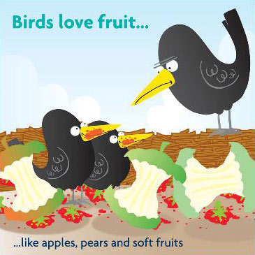 Birds love fruit like apples, pears and soft fruits