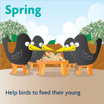 Spring - help birds to feed their young