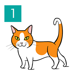 Graphic of cat standing and relaxed with tail curved © RSPCA