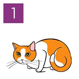 Graphic of cat crouched and tense with lowered body posture © RSPCA