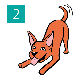 Graphic of dog down on front paws and wagging tail happily © RSPCA