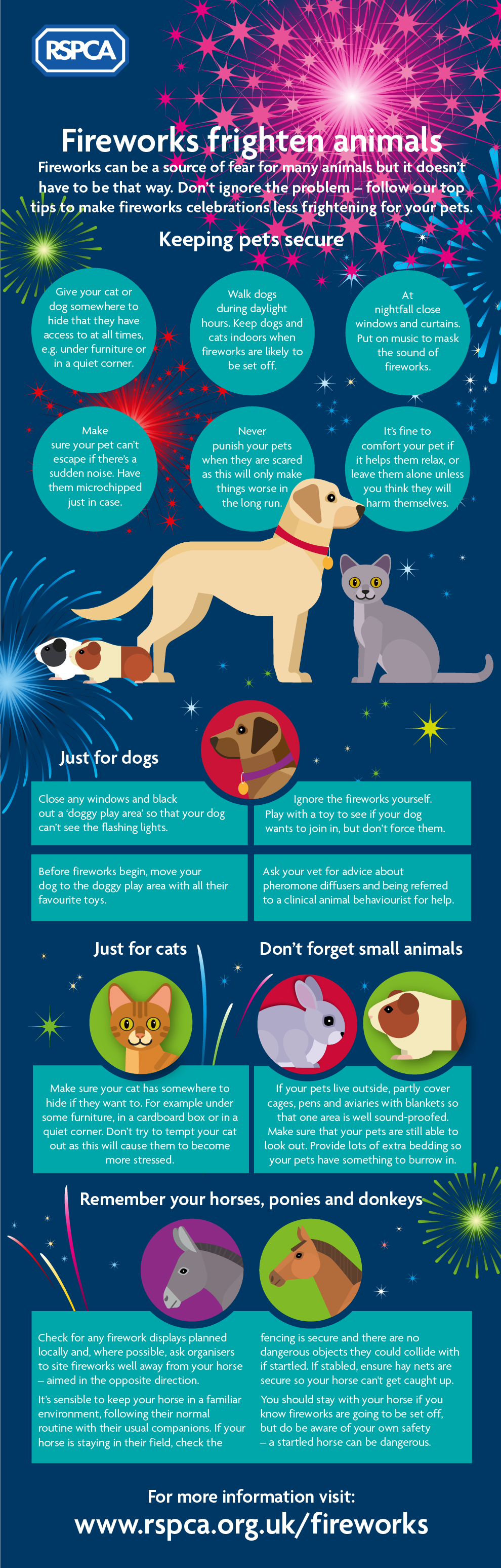 Advice for pet owners during the fireworks season Infographic ¿ RSPCA