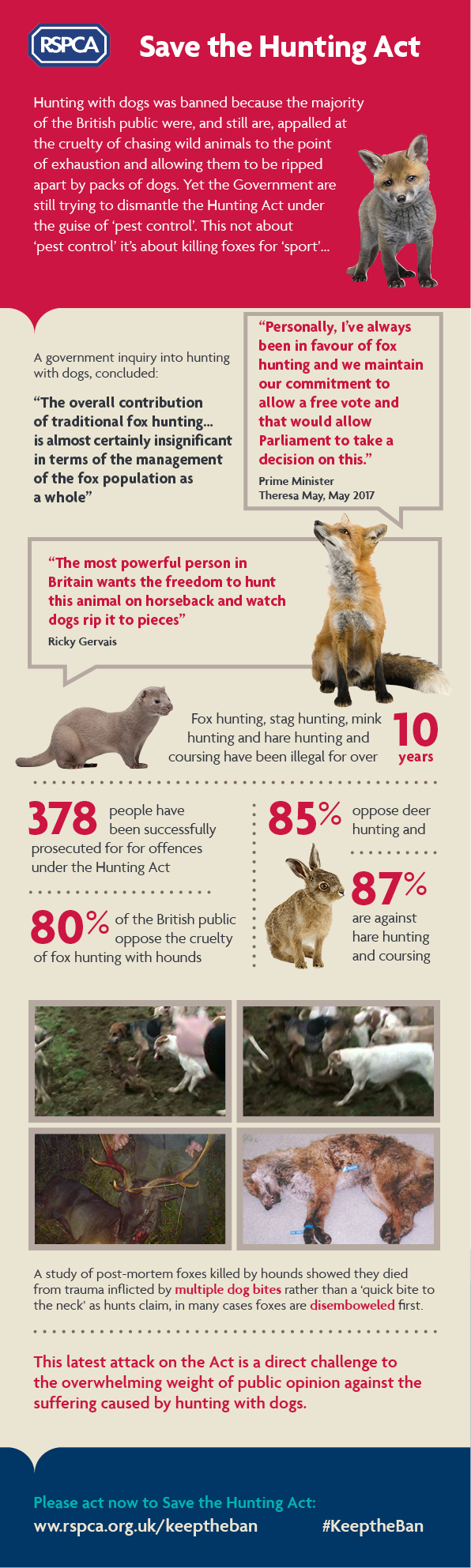 Save the hunting act Infographic